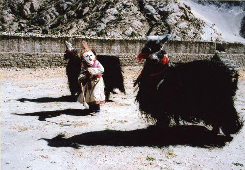 藏民族极善于将动物的骨骼皮毛等物进行利用